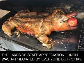 The Lakeside Staff Appreciation Lunch was Appreciated by Everyone but Porky.